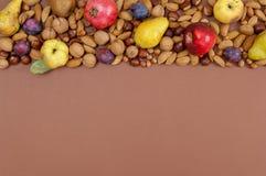 Frutti e dadi di autunno su fondo marrone con lo spazio della copia Immagine Stock Libera da Diritti