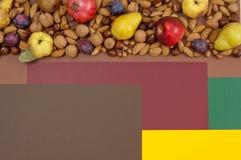 Frutti e dadi di autunno sul fondo di spaccatura con lo spazio della copia Fotografie Stock Libere da Diritti
