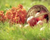Frutti e fiori in autunno Fotografie Stock Libere da Diritti