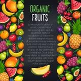 Frutti e pagina di progettazione dei berryes illustrazione di stock