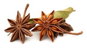 Frutti e semi della spezia dell'anice stellato isolati su fondo bianco Alimento, naturale fotografie stock