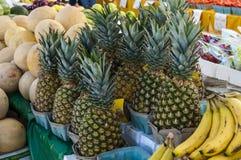 Frutti e Vegatables Immagine Stock Libera da Diritti