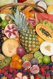 Frutti esotici Fotografia Stock