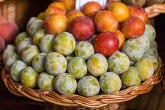 Frutti esotici freschi Fotografia Stock Libera da Diritti