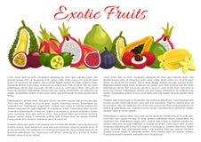 Frutti esotici tropicali del manifesto di informazioni di vettore illustrazione vettoriale