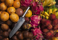 Frutti esotici variopinti Immagini Stock Libere da Diritti