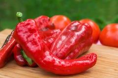 Frutti freschi rossi del pepe Fotografia Stock Libera da Diritti