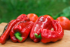 Frutti freschi rossi del pepe Immagini Stock Libere da Diritti