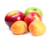 Frutti isolati Fotografia Stock