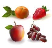 Frutti messi Fotografia Stock