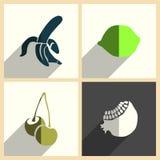 Frutti messi delle icone piane con ombra Illustrazione di vettore Royalty Illustrazione gratis