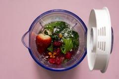 Frutti in miscelatore Fotografie Stock Libere da Diritti
