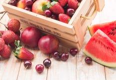 Frutti misti in scatola Fotografia Stock