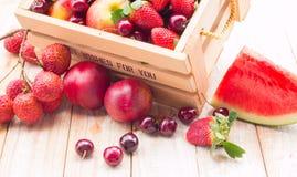 Frutti misti in scatola Immagini Stock Libere da Diritti