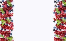 frutti Nero-blu e rossi Uva passa, lamponi, more e mirtilli maturi su fondo bianco Bacche al confine di imag Fotografia Stock