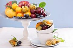 Frutti a nocciolo freschi su un piatto Fotografie Stock