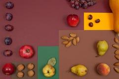Frutti organici di autunno e regolazione matta isolati sul backgro di spaccatura Fotografia Stock Libera da Diritti