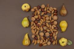 Frutti organici di autunno e regolazione matta isolati sul backgro di spaccatura Immagini Stock