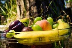 Frutti organici freschi sul piatto Immagini Stock