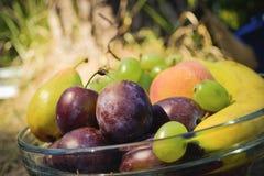 Frutti organici freschi sul piatto Fotografia Stock Libera da Diritti