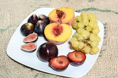 Frutti per alimento sano Immagini Stock