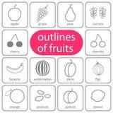 Frutti piani descritti colorati Immagine Stock