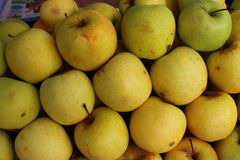 Frutti pronti da mangiare maturi gialli della mela Fotografie Stock
