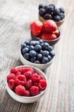 Frutti rossi Fotografia Stock
