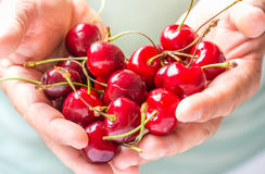 Frutti rossi delle ciliege Immagine Stock