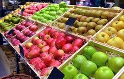 Frutti rossi e verdi della mela Immagine Stock