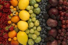 Frutti sani dell'arcobaleno Fotografia Stock Libera da Diritti