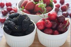 Frutti sani della primavera Immagini Stock