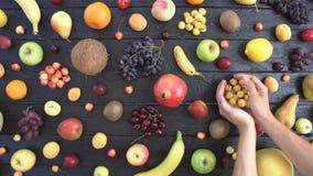 Frutti su fondo ecologico nero Vista superiore archivi video