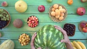 Frutti su fondo ecologico verde Vista superiore archivi video