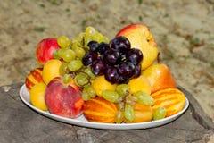 Frutti su un piatto su un grande vecchio ceppo di albero Fotografie Stock Libere da Diritti