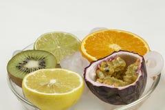 Frutti sulla roccia Fotografie Stock
