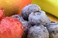 Frutti, uva, mele, mirtillo Immagini Stock Libere da Diritti