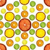 Frutti variopinti affettati trasparenza su fondo bianco Anelli del pompelmo, del limone, del mandarino e dell'arancia Immagini Stock Libere da Diritti