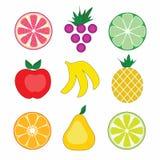 Frutti variopinti di vettore Fotografia Stock