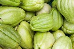 Frutti verdi della zucchina centenaria, fine sulla foto Immagini Stock