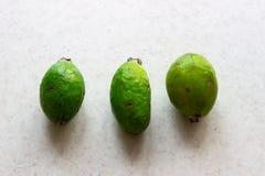 Frutti verdi di feijoa su fondo bianco fotografia stock libera da diritti