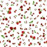 Fruttifica jam-07 Fotografia Stock Libera da Diritti