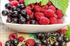 Fruttifichi che è forte antiossidante, il cibo sano - ribes nero, aronia di chokeberry e lampone fotografie stock