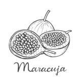 Frutto della passione di Maracuja royalty illustrazione gratis