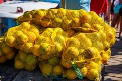 Frutto della passione direttamente dal Brasile Immagine Stock