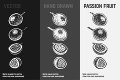 Frutto della passione disegnato a mano Insieme degli abbozzi di vettore illustrazione di stock