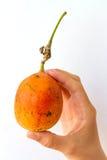 Frutto della passione a disposizione Fotografia Stock Libera da Diritti
