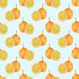 Frutto della passione o maracuja Modello senza cuciture con i frutti - granadiglia Disegno reale dell'acquerello illustrazione vettoriale