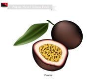 Frutto della passione, una frutta famosa in Papuasia Nuova Guinea illustrazione di stock