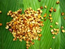 Fry corn (marning) Royalty Free Stock Photos